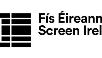Screen Ireland welcomes approval for new Film Regulations to support further development in the audiovisual sector