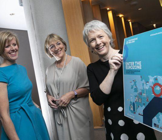 "Enterprise Ireland launches a new ""Enter the Eurozone"" programme"